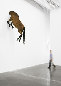 After Nature: New Museum, New York. Art Review