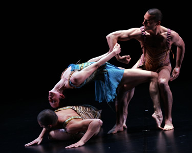 Houston International Dance Coalition – review