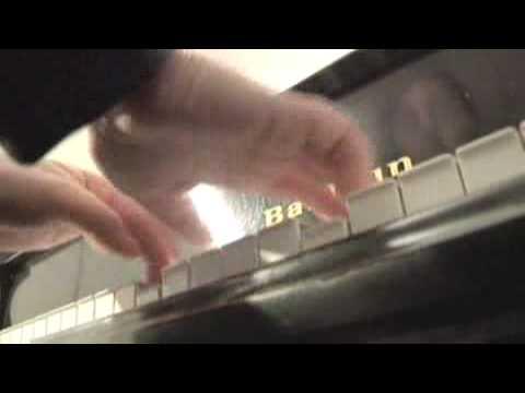 Simone Dinnerstein, Self-Made Concert Pianist