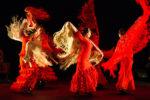 Juan Siddi Flamenco