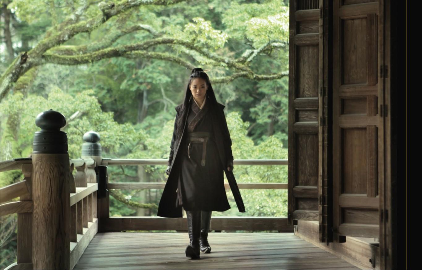 Assassin-Shu Qi