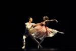 A Farewell at San Francisco Ballet