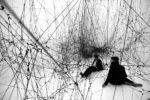 Tomás Saraceno: Stillness in Motion — Cloud Cities