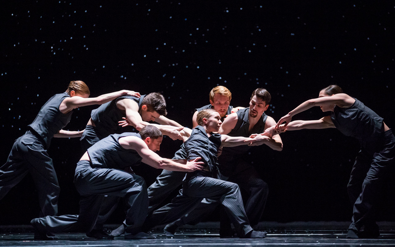 Solo Echo by Crystal Pyte Photo: Todd Rosenberg