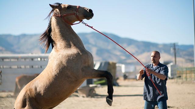 Photo courtesy of Sundance Institute.
