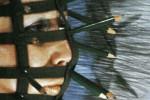 Rebecca Horn: Bodylandscapes