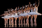 Swan Lake, San Francisco Ballet Program 3