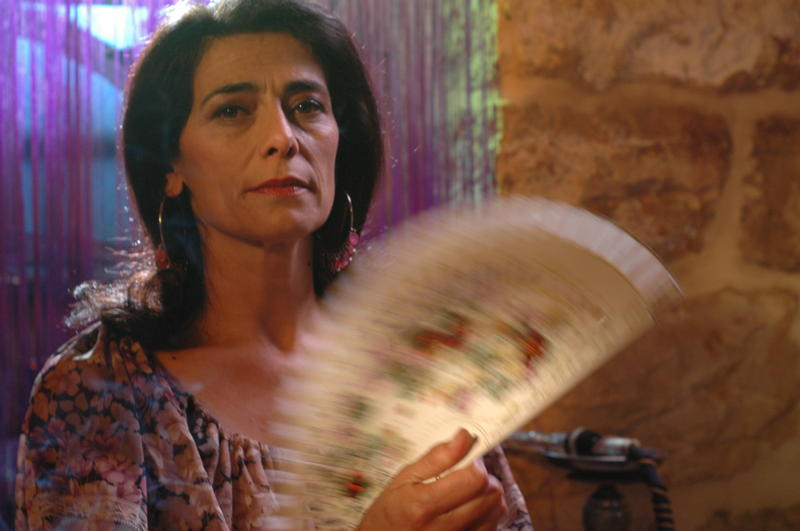 Six Films from the Arab Film Festival
