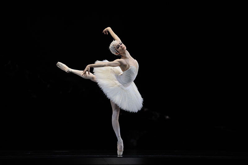 Helgi Tomasson's Swan Lake, San Francisco Ballet
